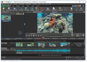 VideoPad Video Editor + Crack Full Version Torrent Patch free download